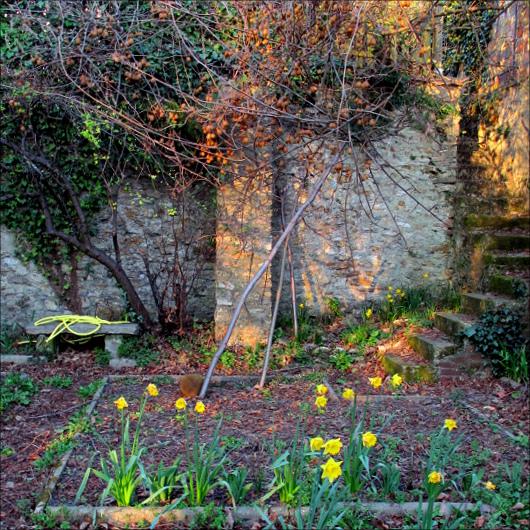 printemps_6