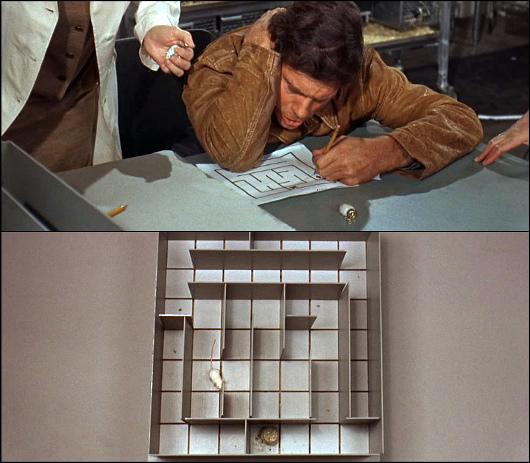Charlie, film sorti en 1968 dans lequel un simple d'esprit est opéré pour gagner des facultés intellectuelles supérieures, selon une méthode qui a très bien fonctionné avec des souris de laboratoire. Alors que Charlie atteint un niveau intellectuel extrêmement élevé, il découvre que les souris qui ont profité de la même opération que lui se mettent à décliner inexorablement.