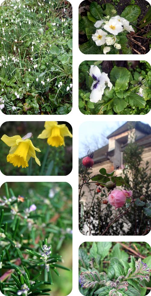 Le livre de la maison le printemps avant l hiver for Le printemps de la maison