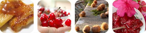 Index-Fruits